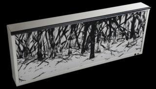 Radiographie forestière de David Décamp