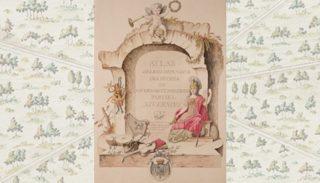 Atlas des bois dépendans des duchés de Nivernois et Donziois (1789)
