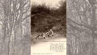 14 – The Forest in Nivernais – Hunting with guns: before running hare