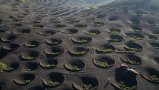 """Funnels"" in the vineyards of La Geria (Lanzarote, Canary Islands)"