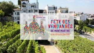 Vineyard on Montmartre hill