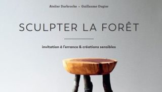 Guillaume Ougier, an artist who sculpts the forest