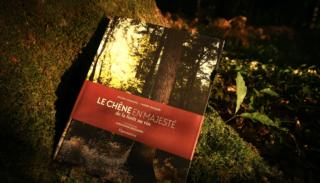 """""""Le Chêne en majesté"""" doubly awarded by the jury of the 2021 OIV Awards"""